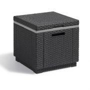 ice-cube-3